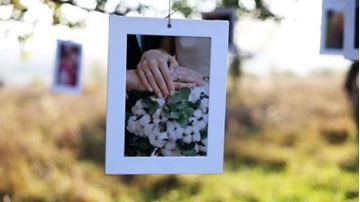 تصویر از Wedding Slideshow