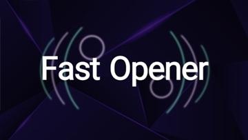 vidiwood fast typo opener